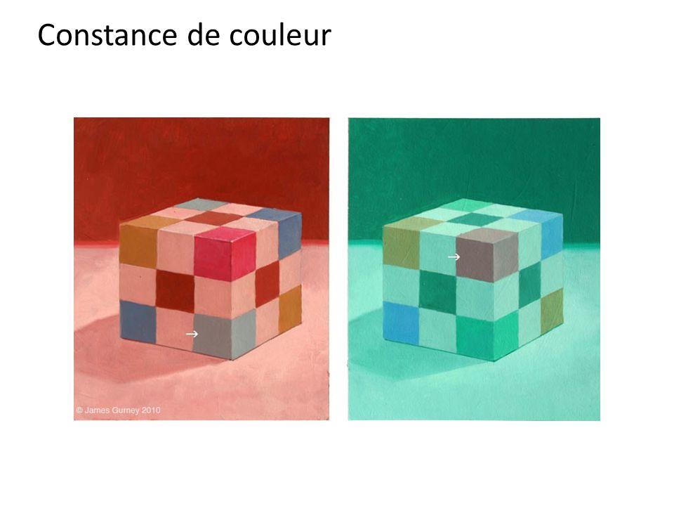 Constance de couleur