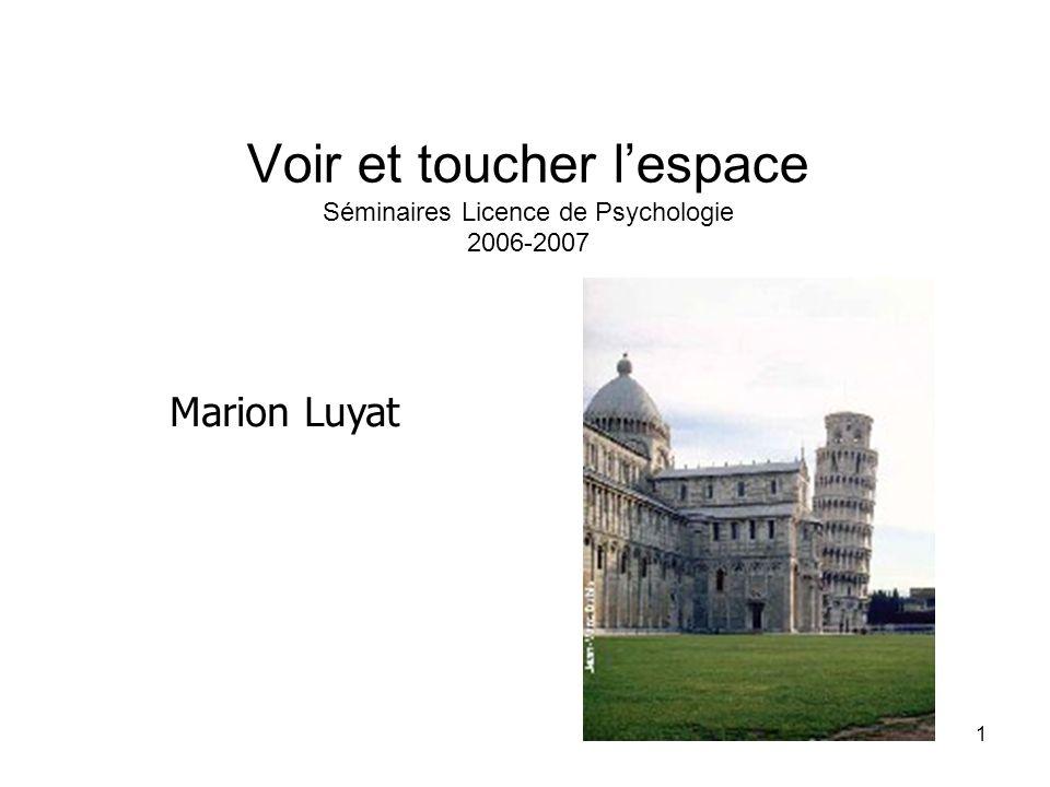 Voir et toucher l'espace Séminaires Licence de Psychologie 2006-2007