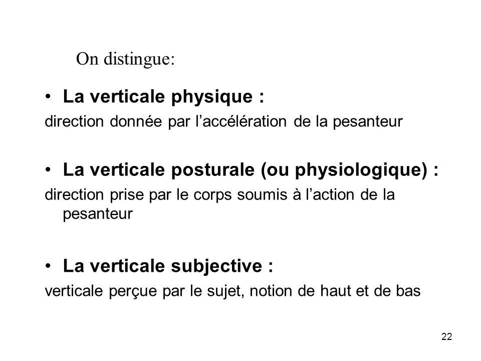 La verticale physique :