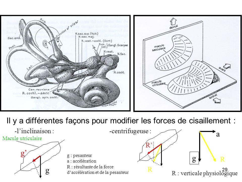 Il y a différentes façons pour modifier les forces de cisaillement :