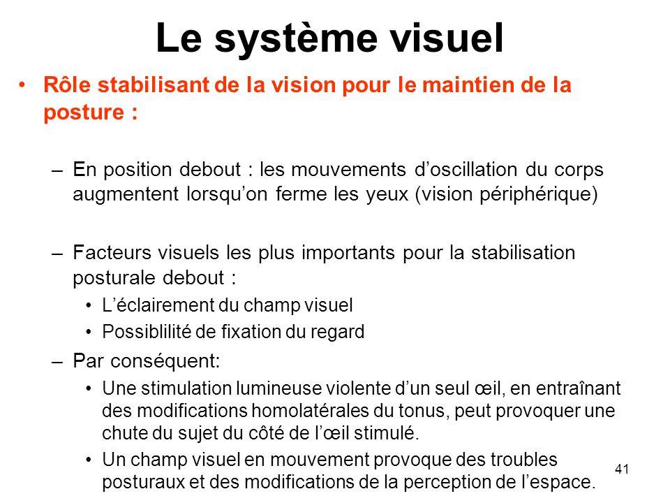 Le système visuel Rôle stabilisant de la vision pour le maintien de la posture :