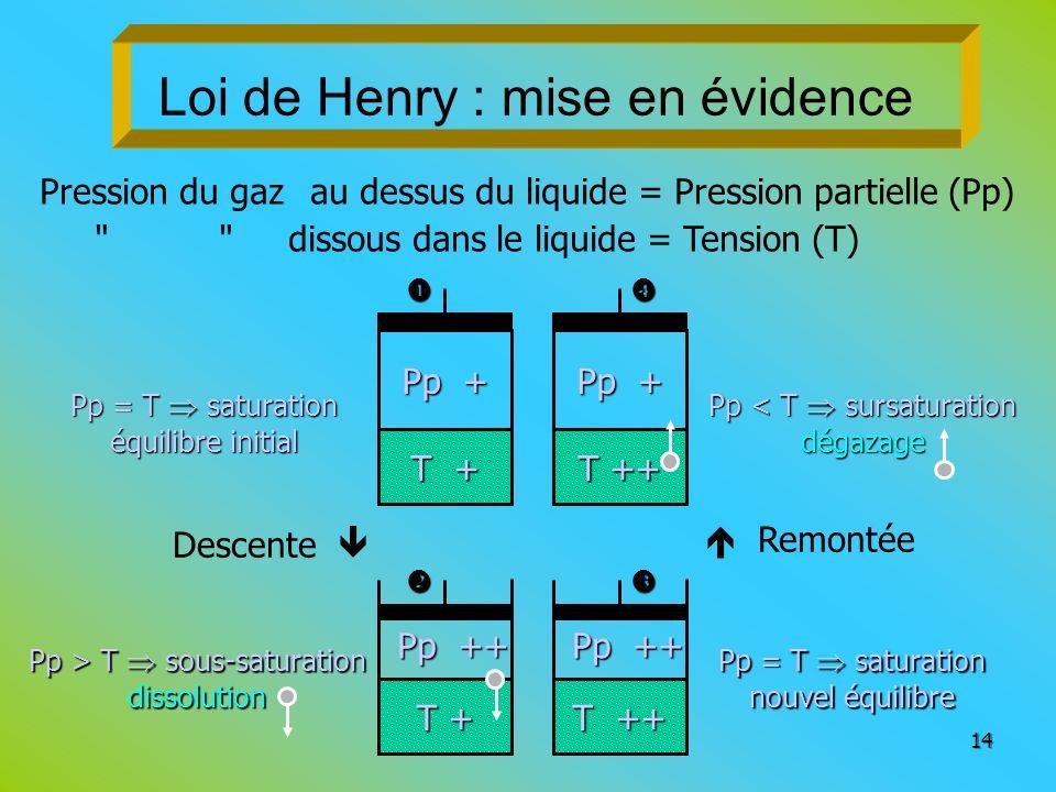 Loi de Henry : mise en évidence