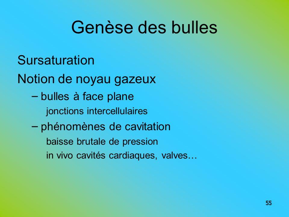 Genèse des bulles Sursaturation Notion de noyau gazeux