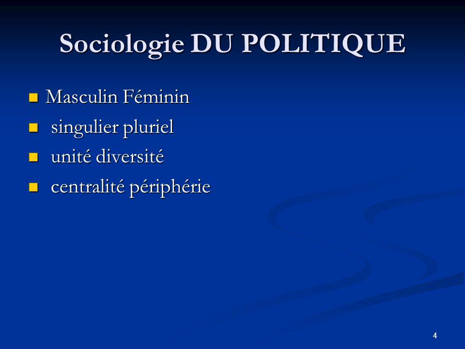 Sociologie DU POLITIQUE