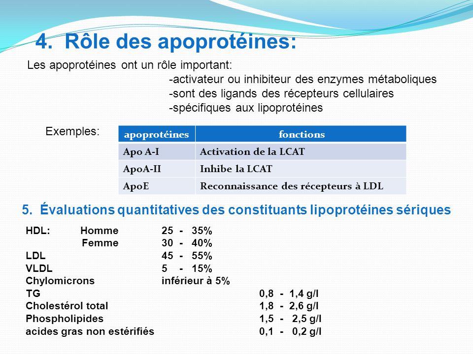 4. Rôle des apoprotéines:
