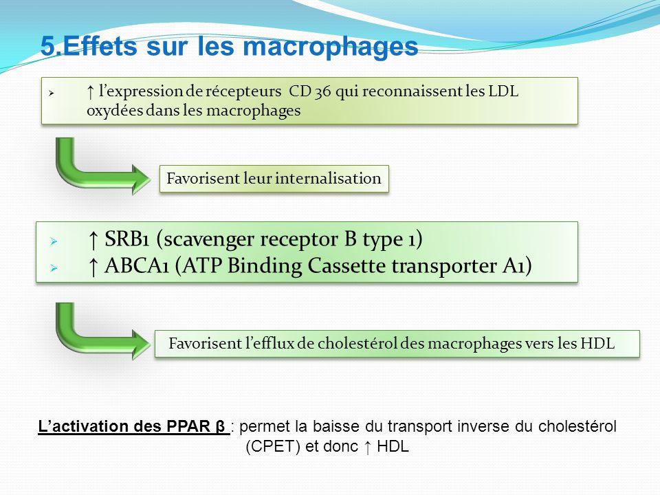 5.Effets sur les macrophages