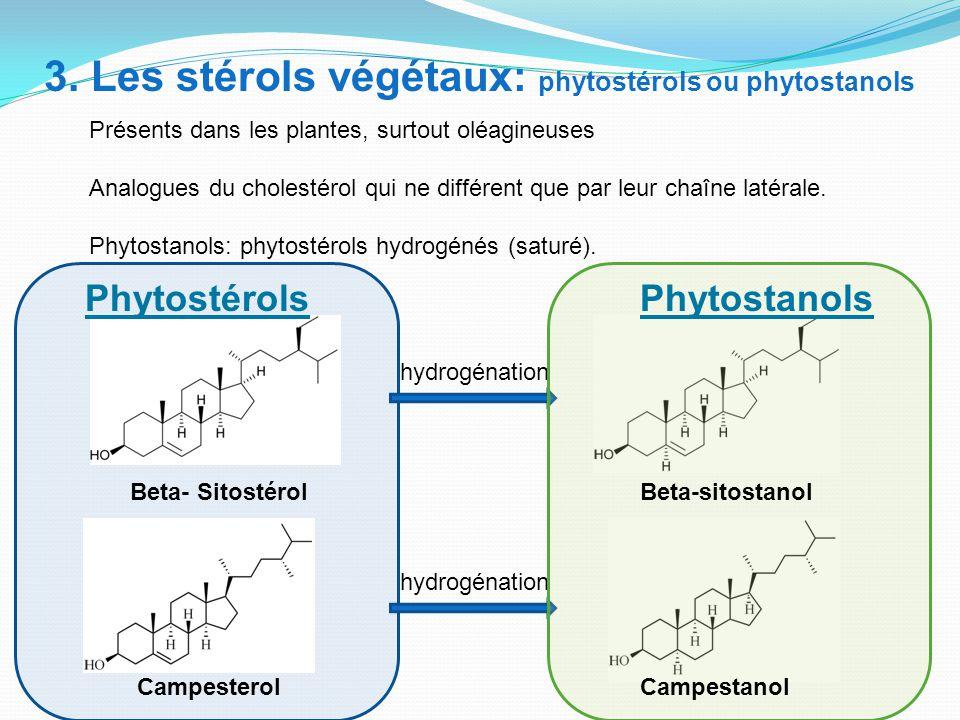 3. Les stérols végétaux: phytostérols ou phytostanols