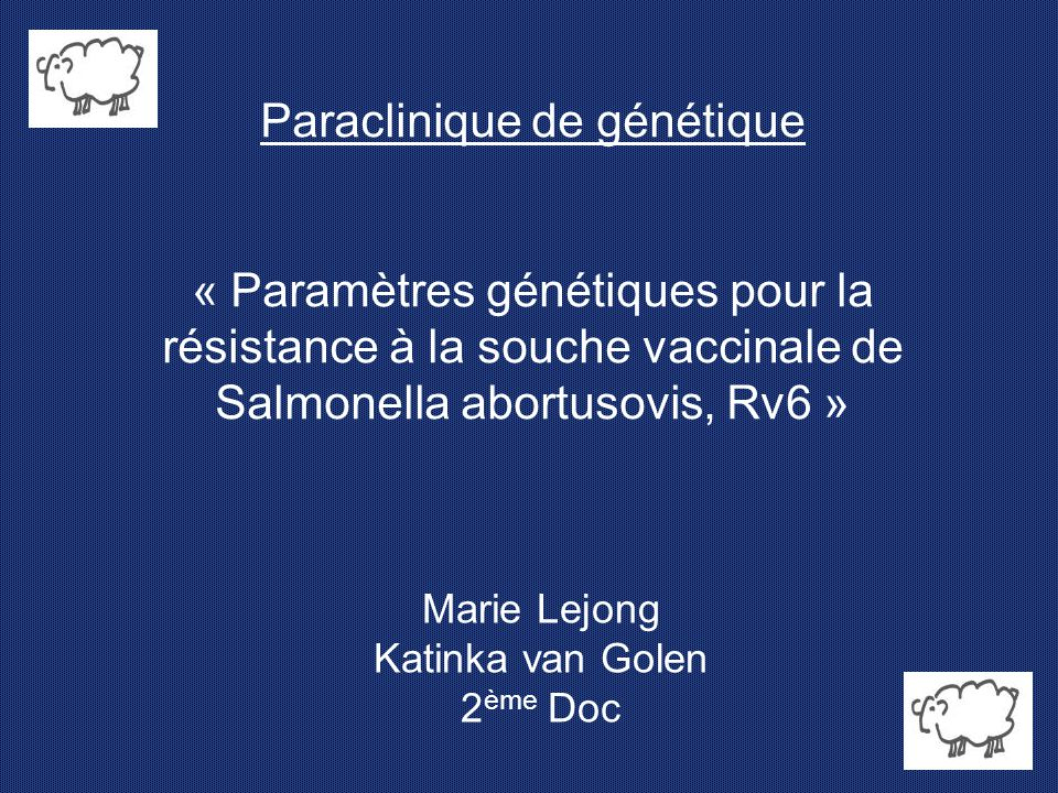 Marie Lejong Katinka van Golen 2ème Doc