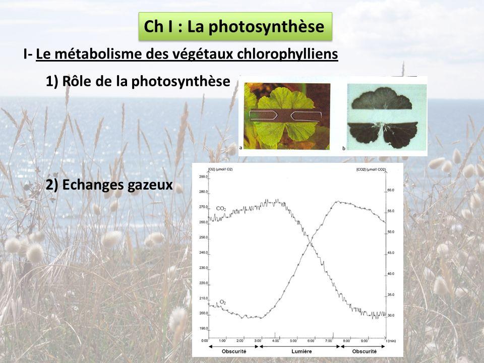 Ch I : La photosynthèse I- Le métabolisme des végétaux chlorophylliens