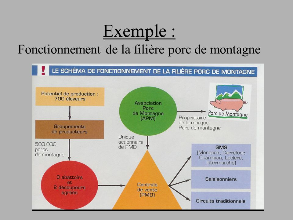 Exemple : Fonctionnement de la filière porc de montagne
