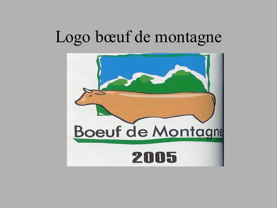 Logo bœuf de montagne