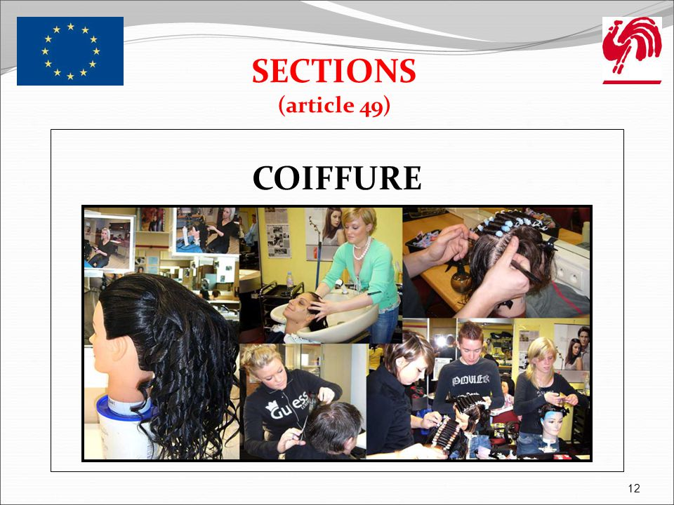 SECTIONS (article 49) COIFFURE