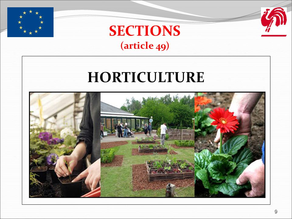 SECTIONS (article 49) HORTICULTURE