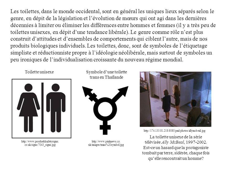 Les toilettes, dans le monde occidental, sont en général les uniques lieux séparés selon le genre, en dépit de la législation et l'évolution de mœurs qui ont agi dans les dernières décennies à limiter ou éliminer les différences entre hommes et femmes (il y a très peu de toilettes unisexes, en dépit d'une tendance libérale). Le genre comme rôle n'est plus construit d'attitudes et d'ensembles de comportements qui ciblent l'autre, mais de nos produits biologiques individuels. Les toilettes, donc, sont de symboles de l'étiquetage simpliste et réductionniste propre à l'idéologie néolibérale, mais surtout de symboles un peu ironiques de l'individualisation croissante du nouveau régime mondial.