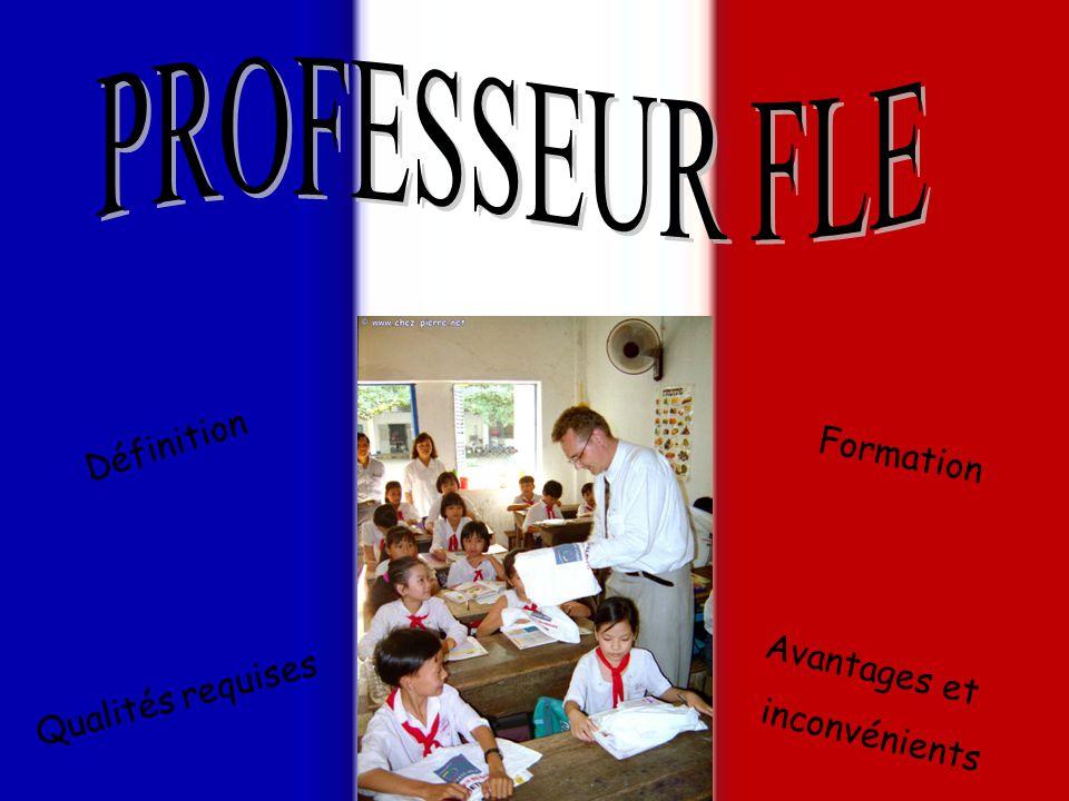 PROFESSEUR FLE Définition Formation Avantages et Qualités requises