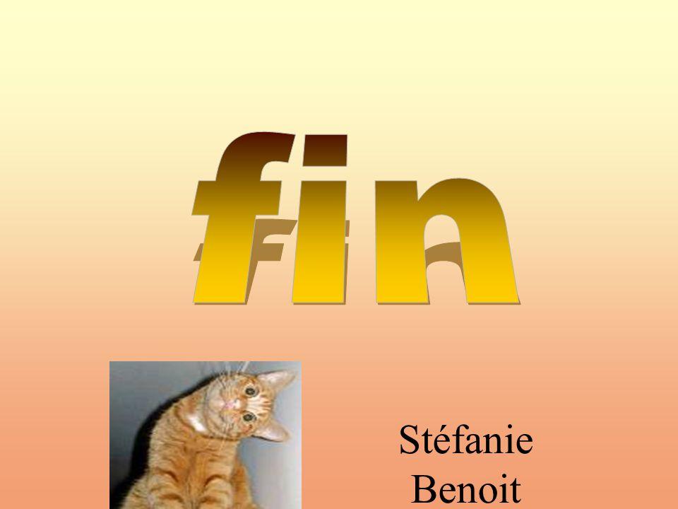 fin Stéfanie Benoit