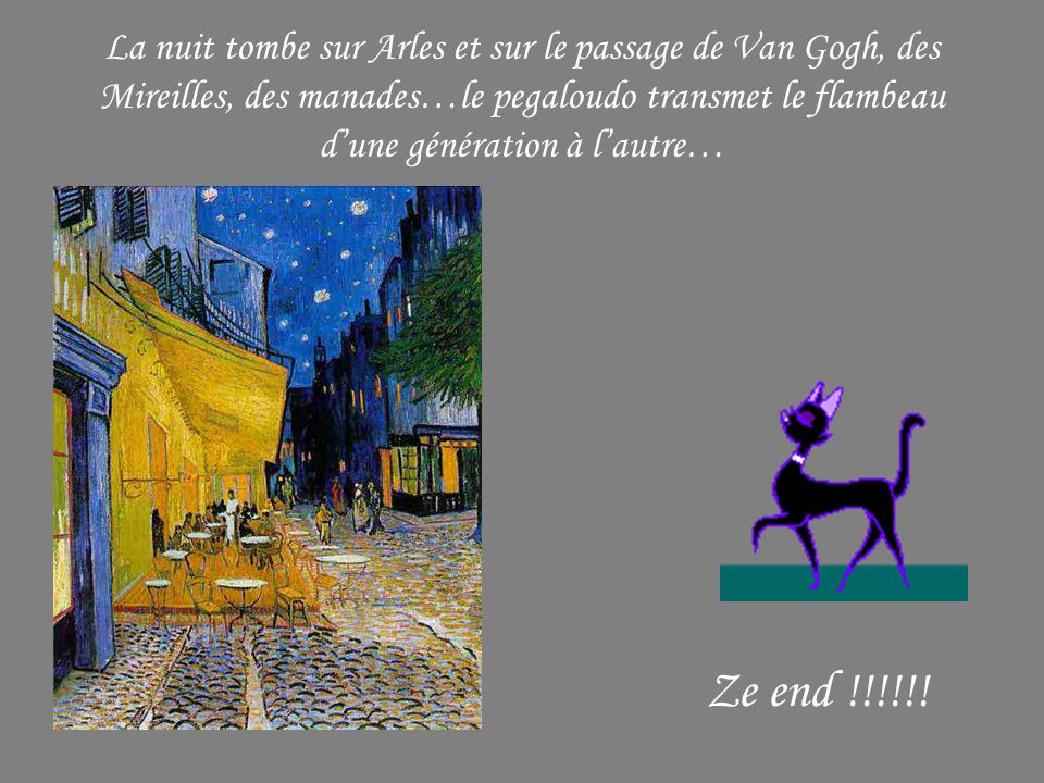La nuit tombe sur Arles et sur le passage de Van Gogh, des Mireilles, des manades…le pegaloudo transmet le flambeau d'une génération à l'autre…