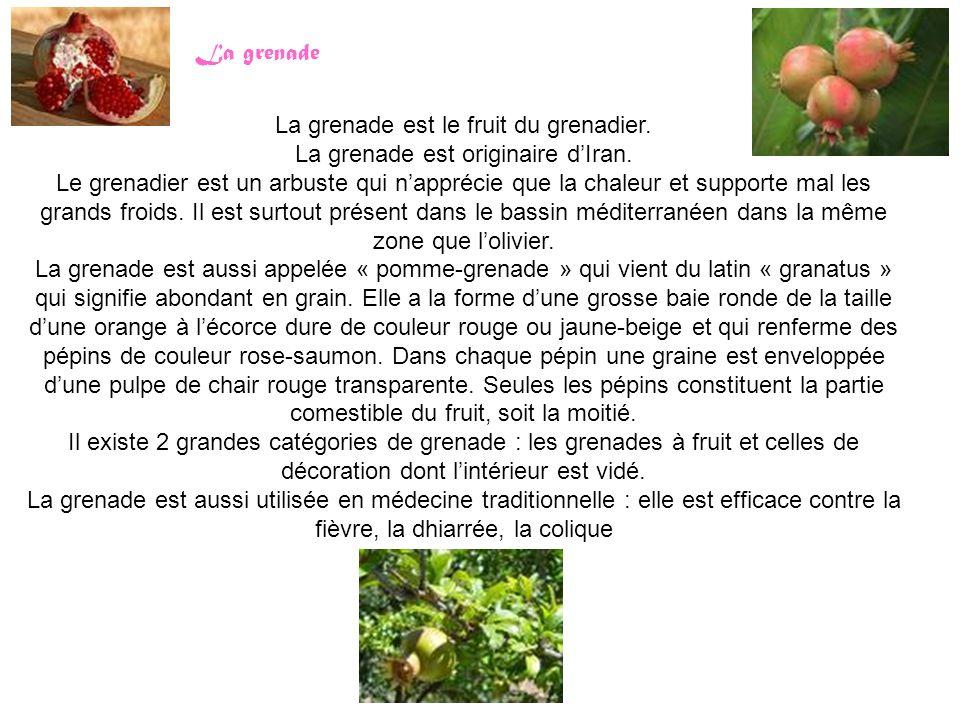 La grenade est le fruit du grenadier.