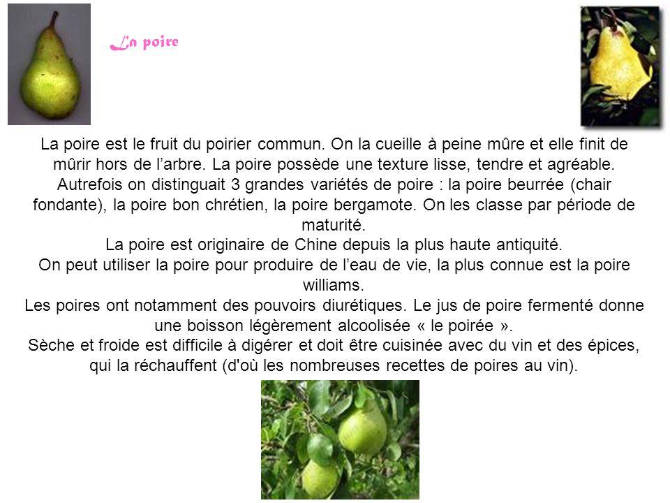 La poire est originaire de Chine depuis la plus haute antiquité.