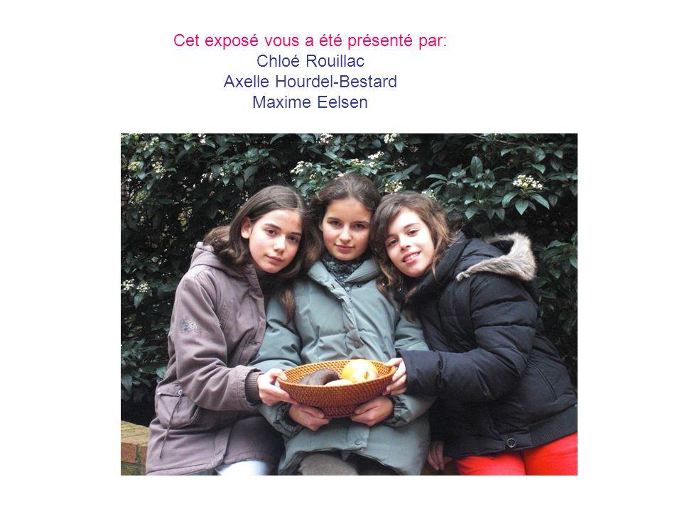 Cet exposé vous a été présenté par: Chloé Rouillac