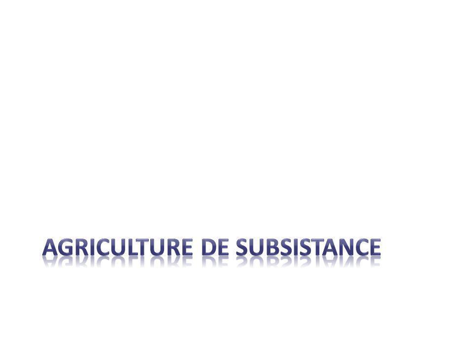 AGRICULTURE DE SUBSISTANCE
