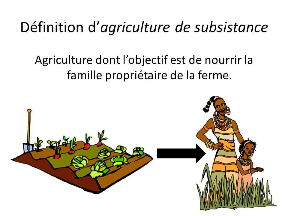 Définition d'agriculture de subsistance