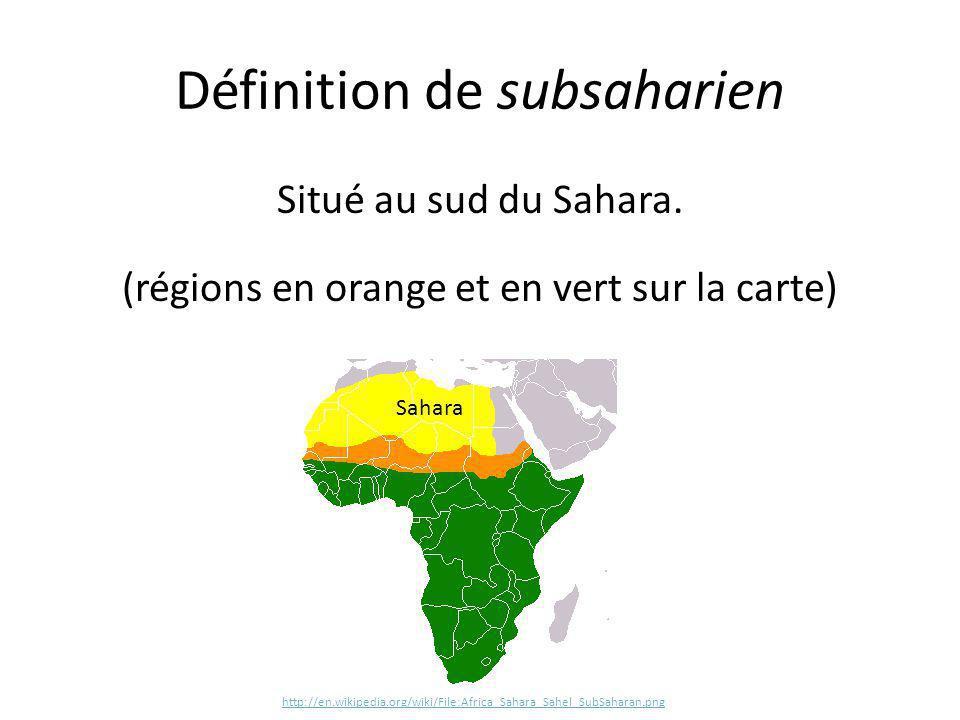 Définition de subsaharien
