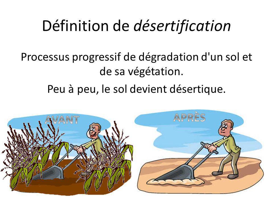 Définition de désertification