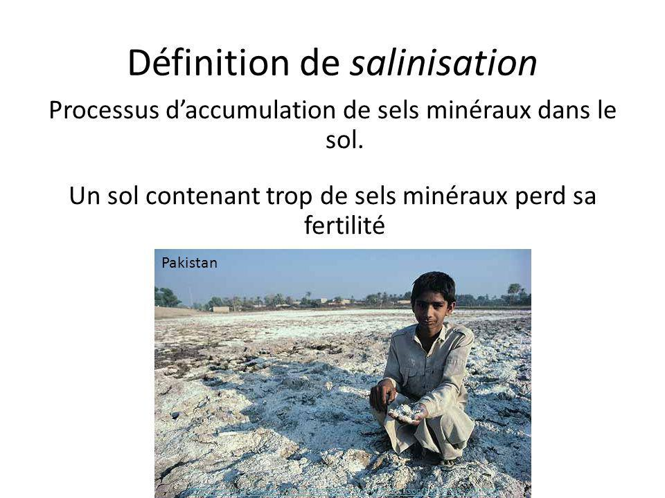 Définition de salinisation