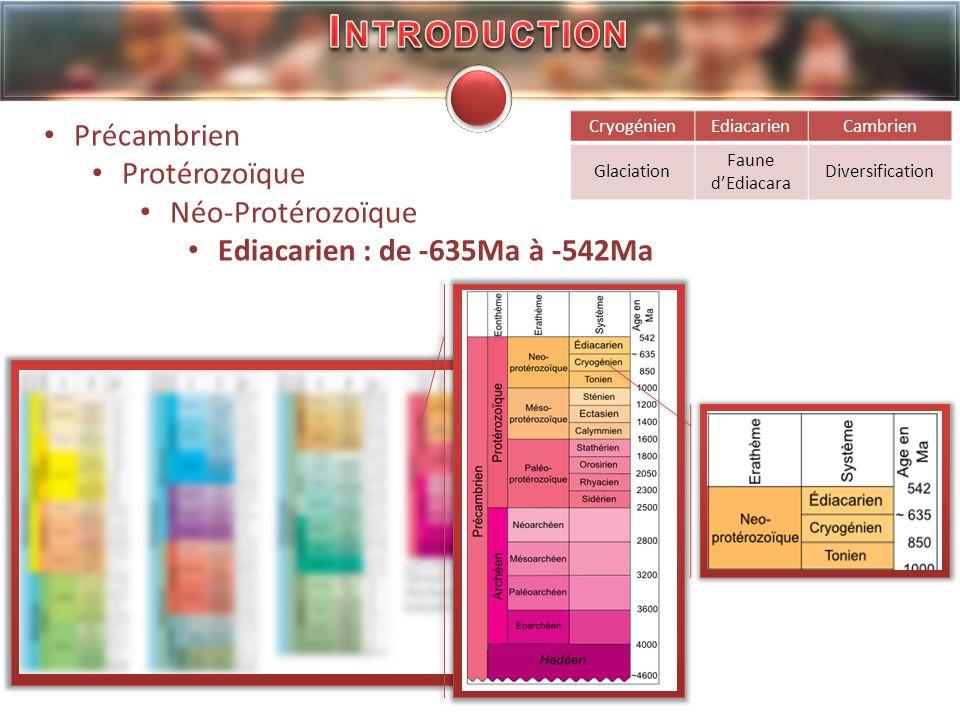 Introduction Précambrien Protérozoïque Néo-Protérozoïque