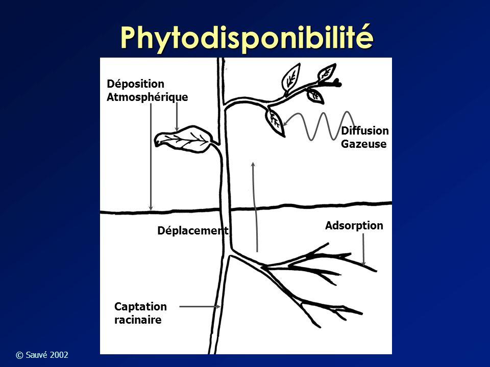 Phytodisponibilité Déposition Atmosphérique Diffusion Gazeuse