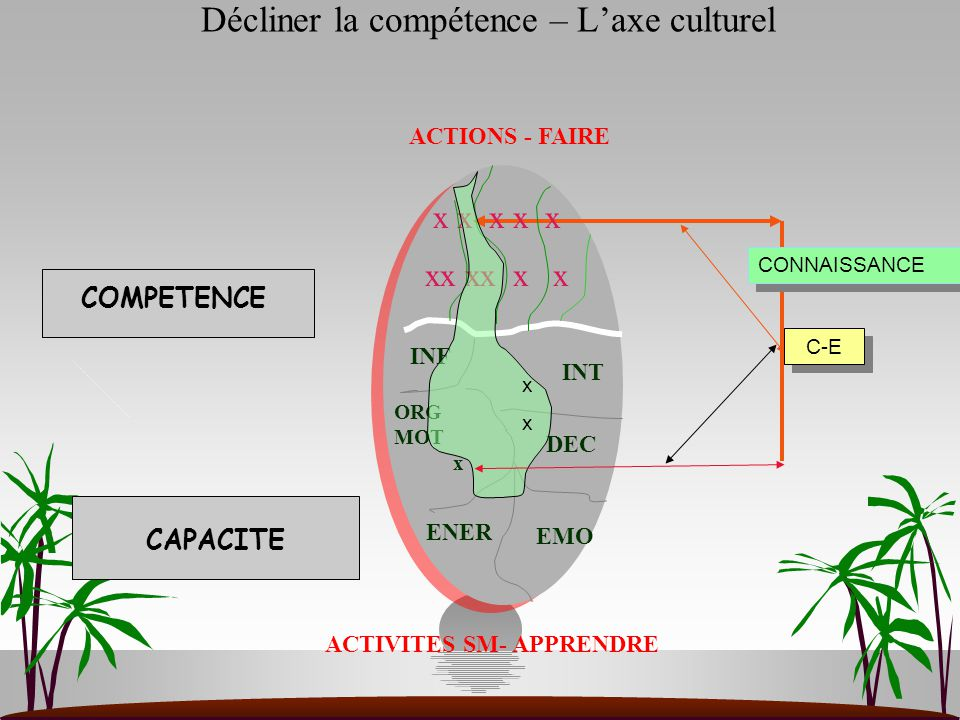 Décliner la compétence – L'axe culturel