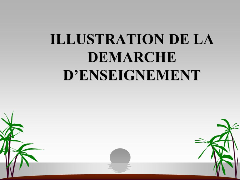 ILLUSTRATION DE LA DEMARCHE D'ENSEIGNEMENT