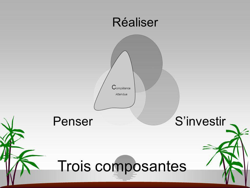 Trois composantes Compétence