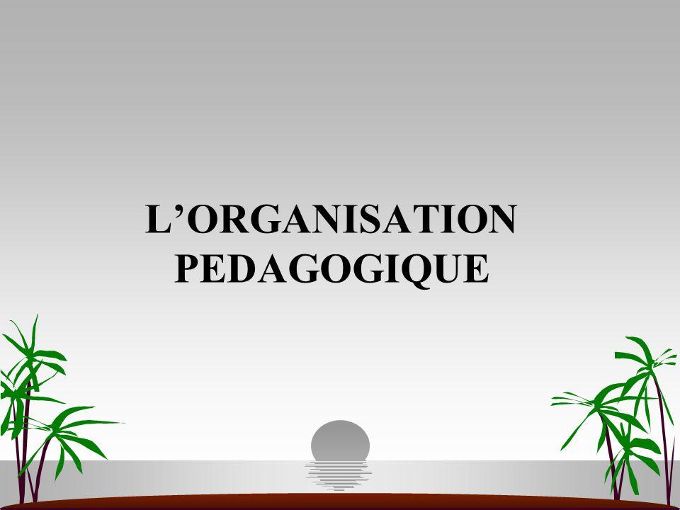 L'ORGANISATION PEDAGOGIQUE