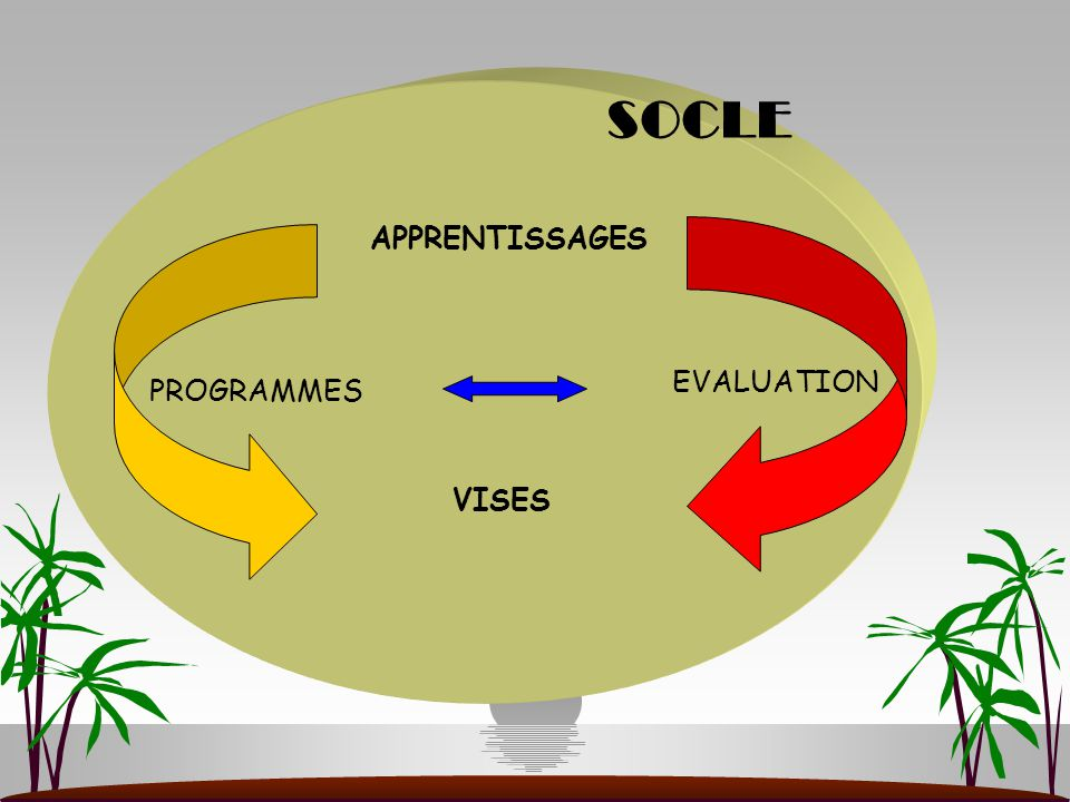 SOCLE APPRENTISSAGES EVALUATION PROGRAMMES VISES