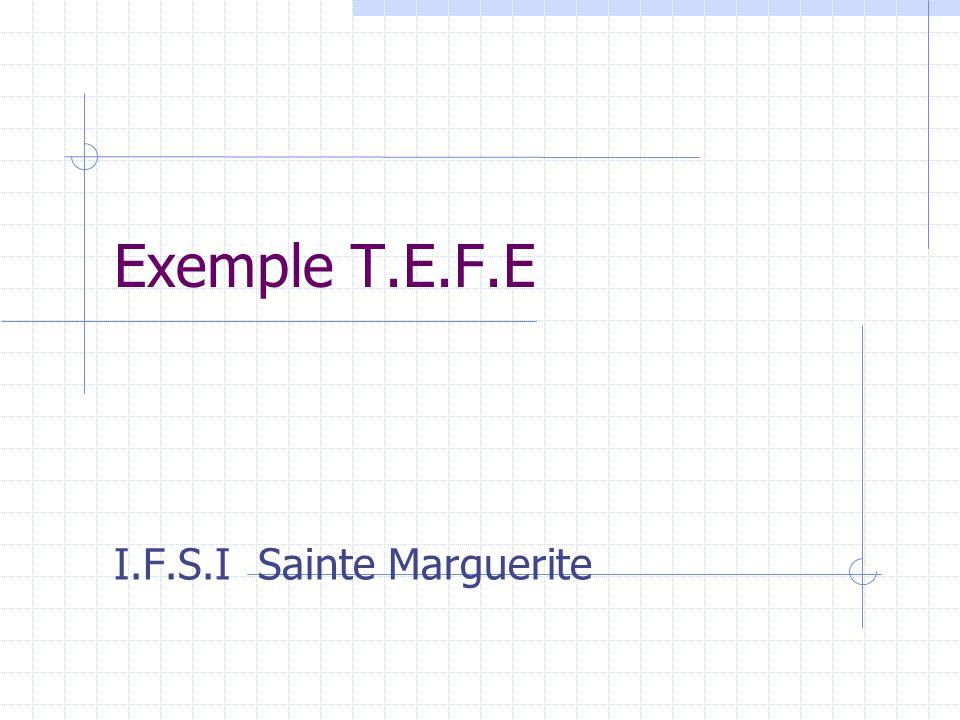 I.F.S.I Sainte Marguerite