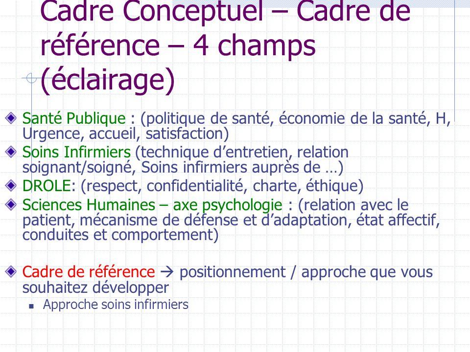 Cadre Conceptuel – Cadre de référence – 4 champs (éclairage)