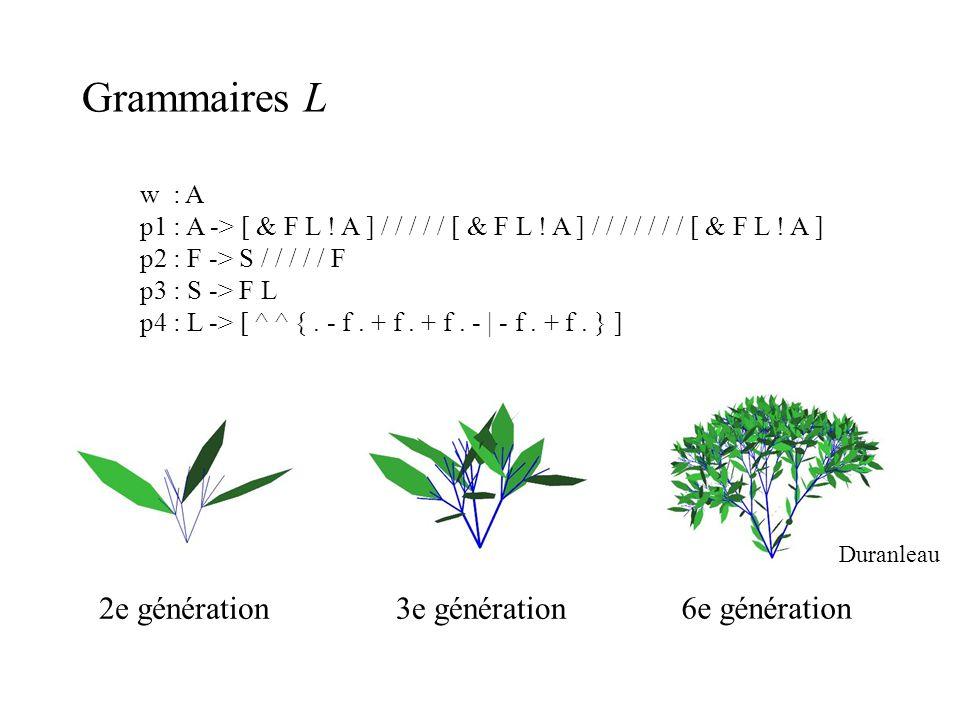 Grammaires L 2e génération 3e génération 6e génération w : A
