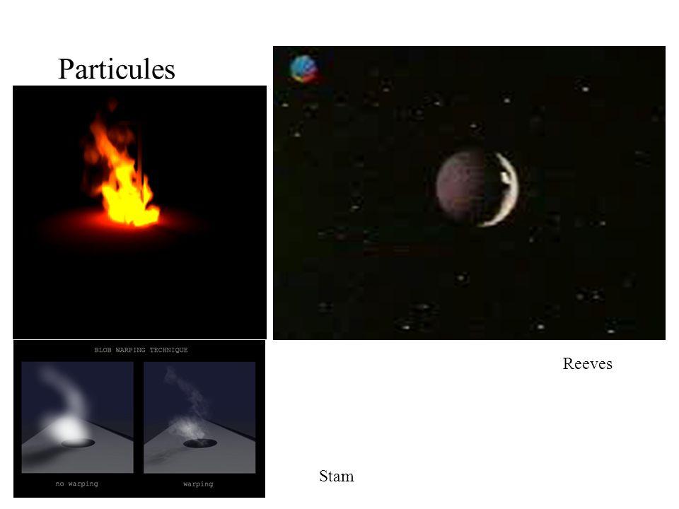 Particules Reeves Stam