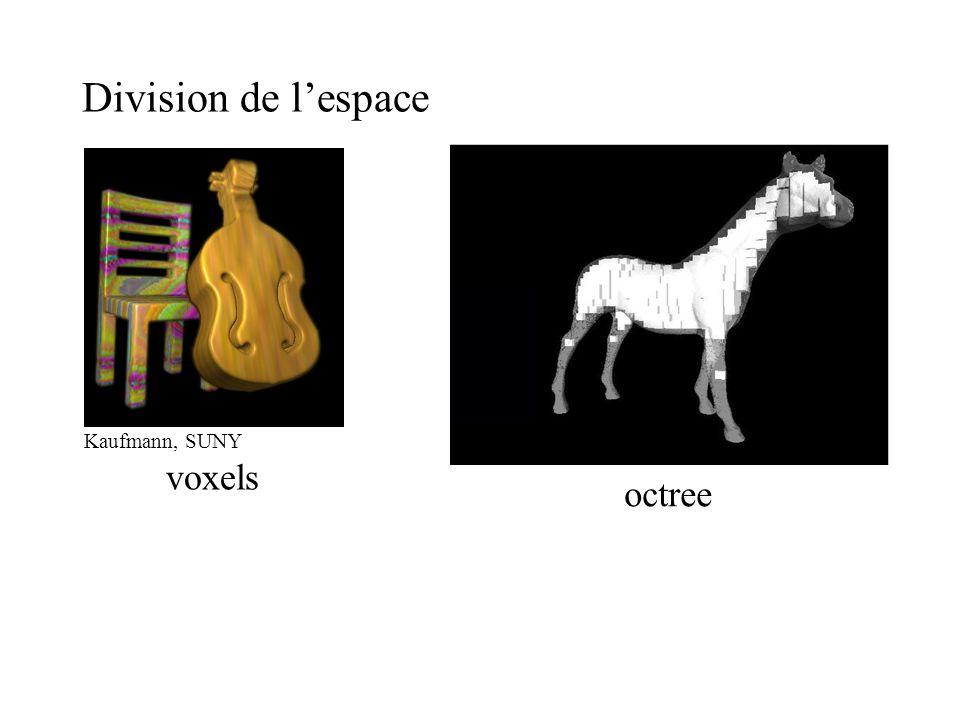 Division de l'espace octree Kaufmann, SUNY voxels