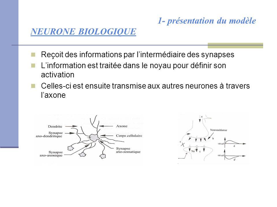 1- présentation du modèle NEURONE BIOLOGIQUE