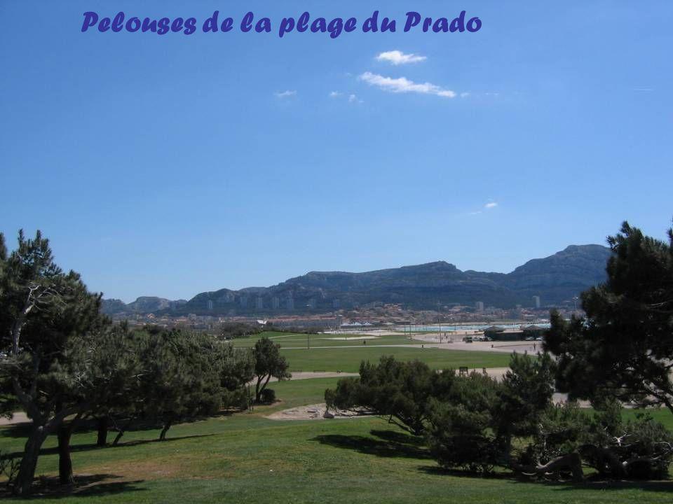 Pelouses de la plage du Prado