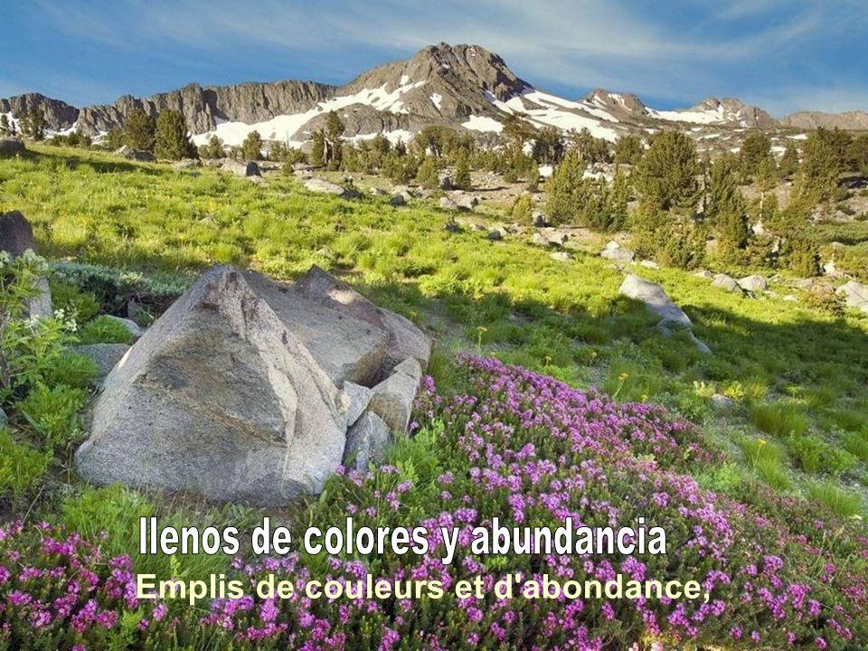 llenos de colores y abundancia