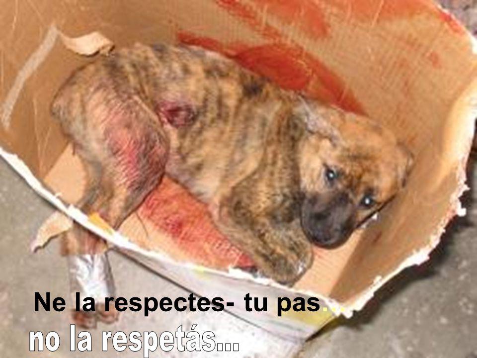 Ne la respectes- tu pas…