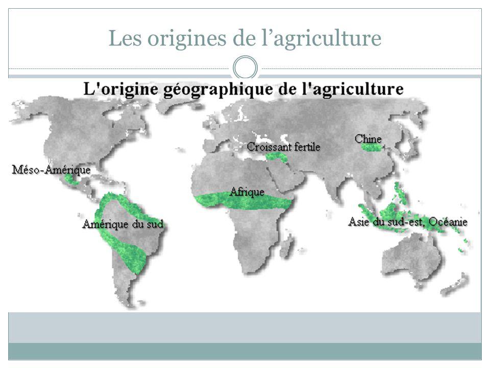Les origines de l'agriculture
