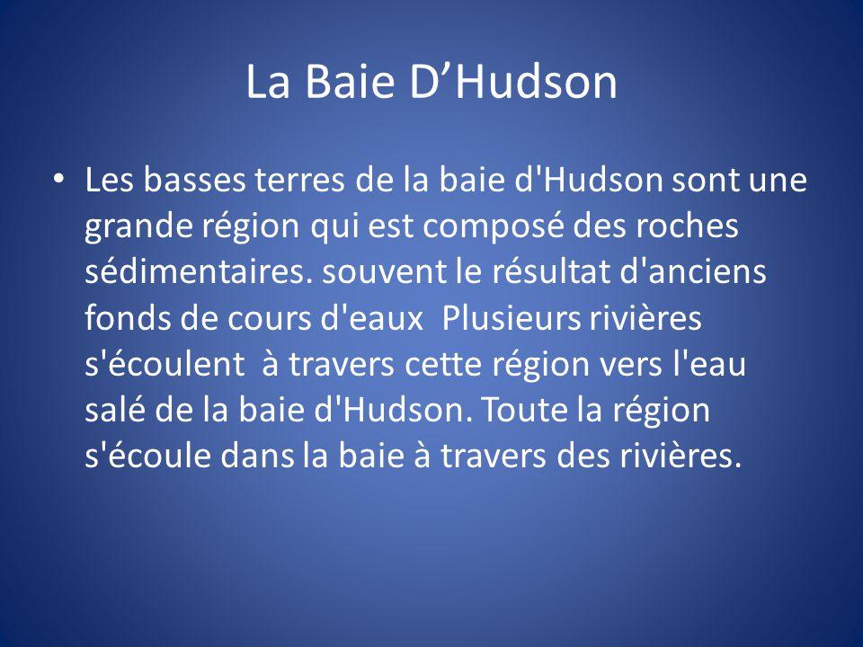 La Baie D'Hudson