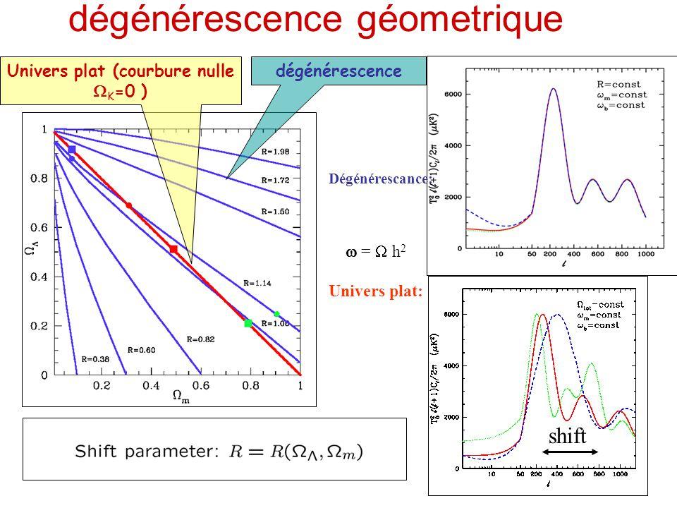 dégénérescence géometrique