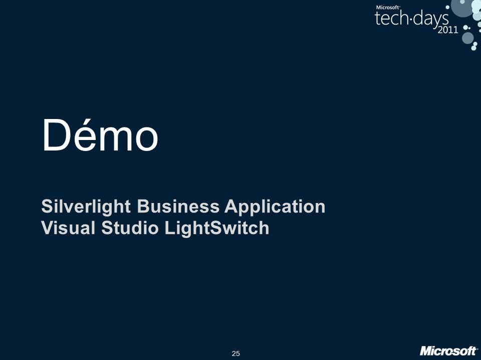 Silverlight Business Application Visual Studio LightSwitch