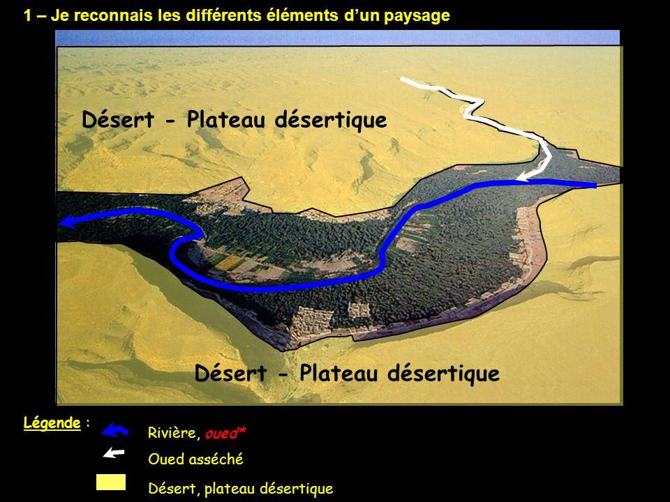 Désert - Plateau désertique